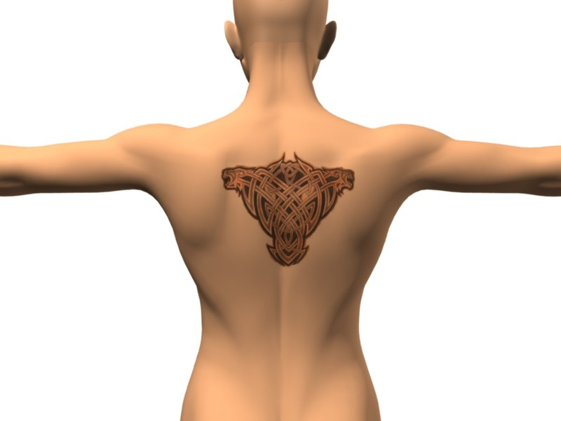 Made with the Back Tattoo scene (insert your own photo) Celtic tiger tattoo